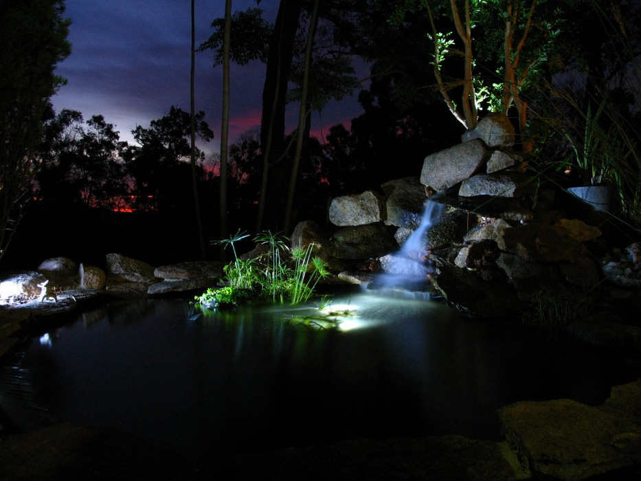 photoblog image My brother's fishpond
