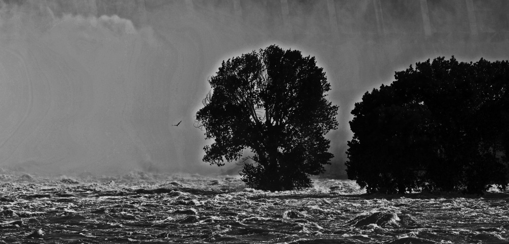 photoblog image The nature of the Floods